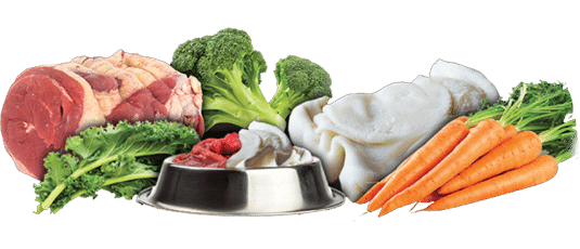 Finding The Right Natural Dog Food