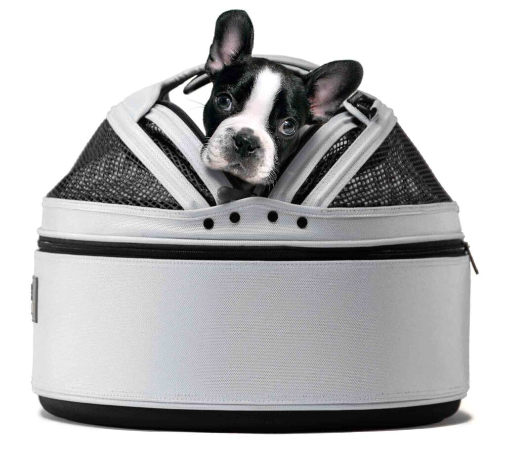 Dogs In A Pet Carrier