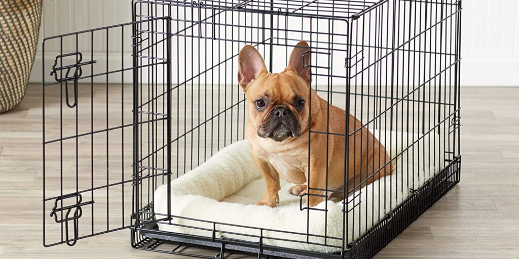 Dogs In The Right Sized Kennel