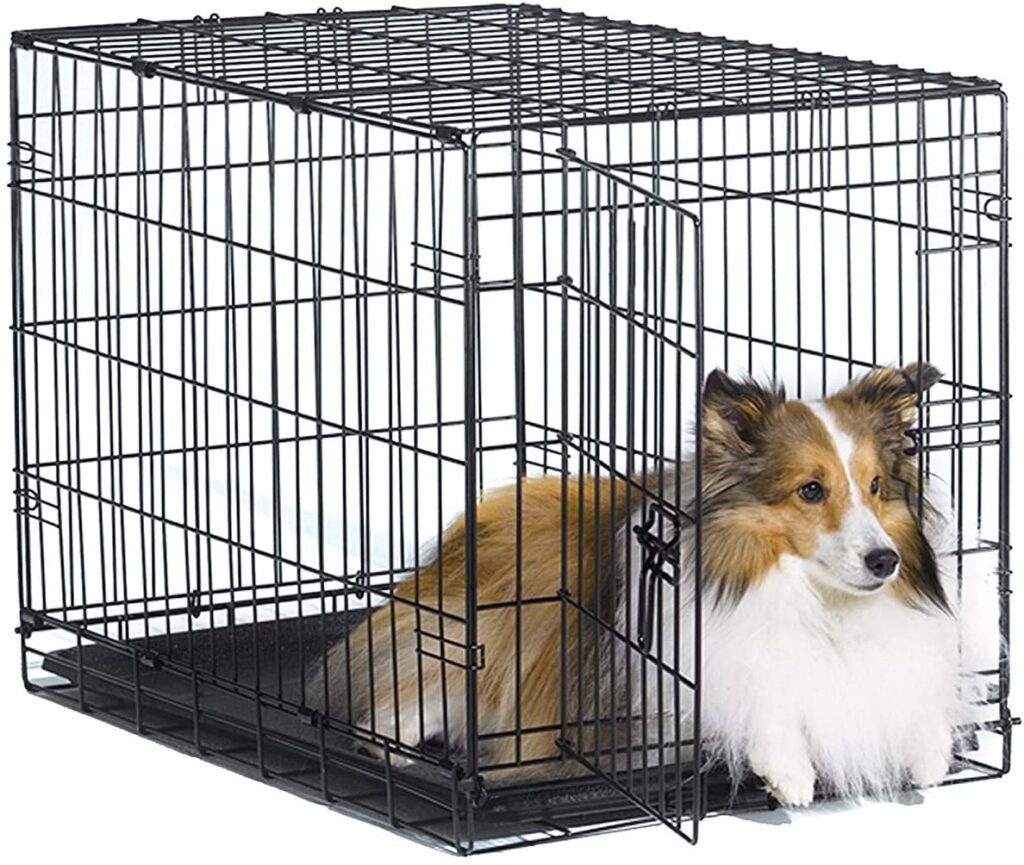 Finding The Best Dog Kennel